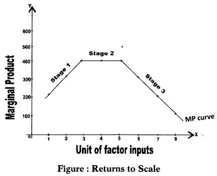 Law of returns to the scale