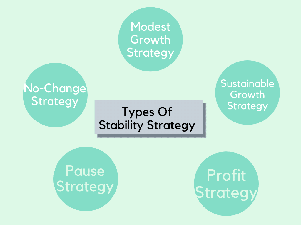 Types Of Stability Strategy