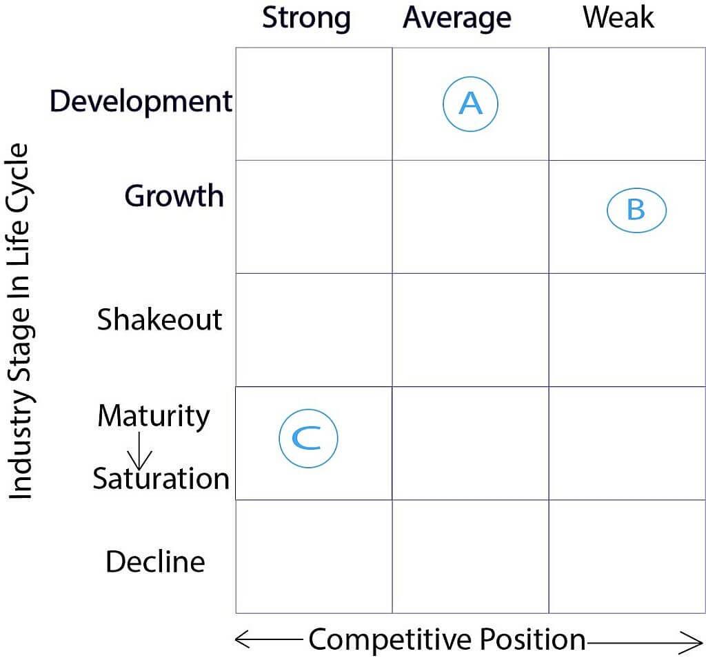 Hofer's Product-Market Evolution Matrix