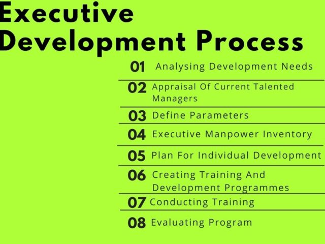 Executive Development Process