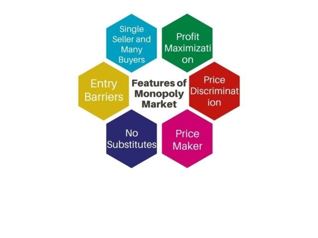 Features of Monopoly Market