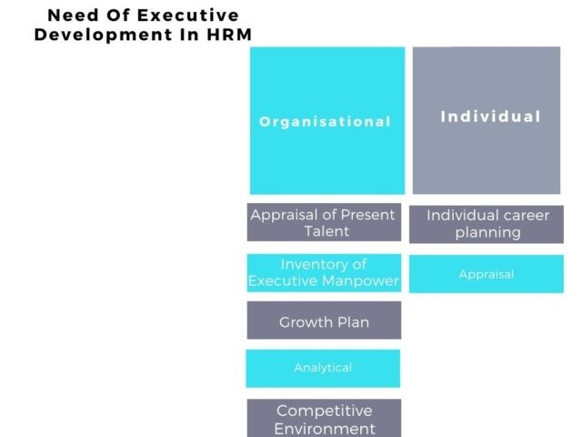 Need Of Executive Development In HRM