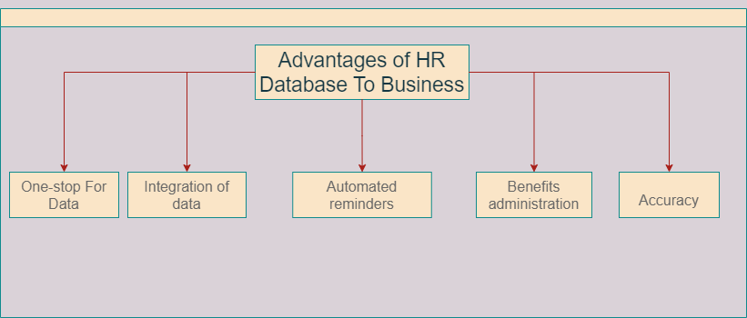Advantages Of HR Database To Business