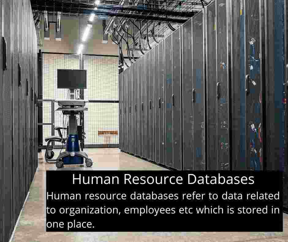 Human Resource Databases