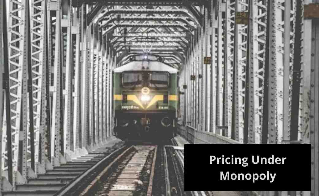 Pricing Under Monopoly
