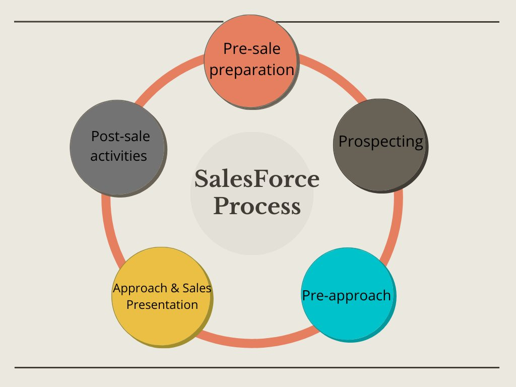 Sales Force Process