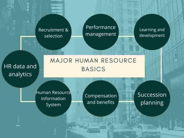 Major Human Resource Basics
