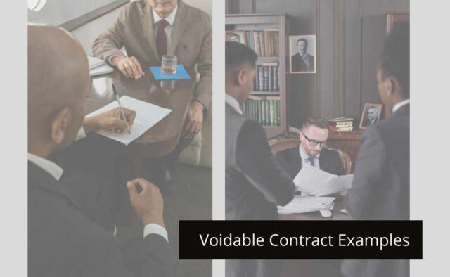 Voidable Contract Examples