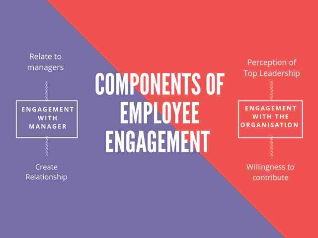 Components of Employment Engagement